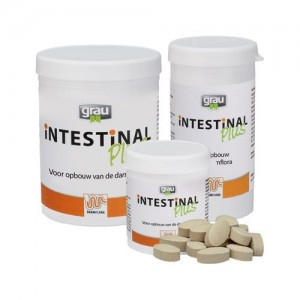 GRAU Intestinal Plus - 120 tabletten